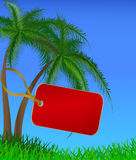 The red label hanging on a trunk of a palm tree Stock Image