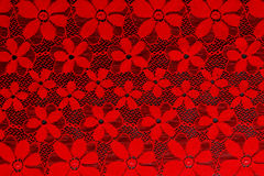 Red lace background Stock Image