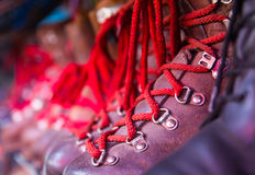 Red laces Royalty Free Stock Photos