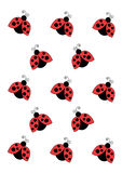 Red lady bird ornament Stock Images