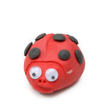 Red ladybird Royalty Free Stock Photos