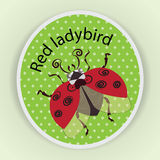 Red ladybird in flight. Sticker. Stylized images of ladybug on green in a dot background, a cute baby character, a symbol Royalty Free Stock Photos