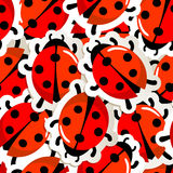 Red ladybug pattern. Vector illustration  of a red ladybug pattern Royalty Free Stock Photo