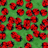 Red ladybugs in the garden. Seamless Stock Images
