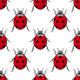 Red ladybugs vintage seamless pattern Stock Photography