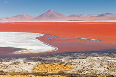 Red Lagoon Red Lake there are many colors, red, yellow, blue, white, Eduardo Avaroa andean fauna National Reserve, Bolivia Royalty Free Stock Photography