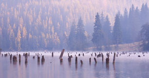 Red Lake Royalty Free Stock Photo