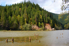 Red lake in transylvania stock photography