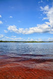 Red lake waters with tropical vegetation at background Royalty Free Stock Photography