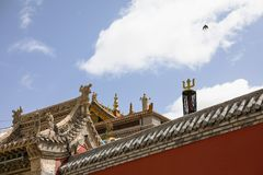 The red Lama Temple and the swallow Royalty Free Stock Image