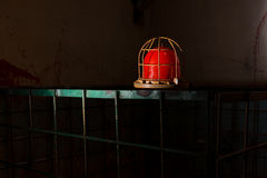 Red lamp on the iron cage Stock Photo