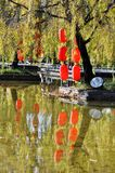 Red Lamp in Willow Tree. Colourful red lanterns hanging on the willow tree have beautiful reflection in pond water . Taken in Lijiang,Yunnan, China royalty free stock photos