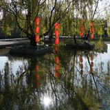 Red lamp in willow tree. Colourful red lanterns hanging on the willow tree have beautiful reflection in pond water . Taken in Lijiang,Yunnan, China royalty free stock image