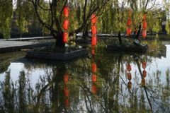 Red Lamp in Willow Tree. Colourful red lanterns hanging on the willow tree have beautiful reflection in pond water . Taken in Lijiang,Yunnan, China royalty free stock photo