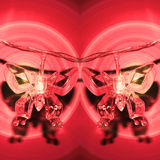 Red lamps butterfly Stock Images