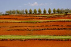 Red Land. In Yunnan Province, southwest of China Royalty Free Stock Photography