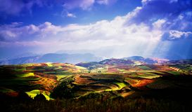 Red land - in China`s yunnan province Royalty Free Stock Photography