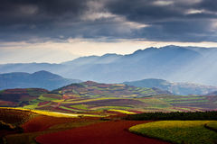Red land  in sunrise. Colorful lands  in sunrise, in the plateau of altitude 2600 meters. Red land township, Yunnan province, China. Yunnan is warm and humid Stock Photography