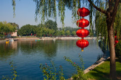 Red lantern Royalty Free Stock Images