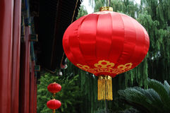 Red lantern. In a Chinese ancient garden vector illustration
