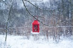 Red lantern hanging on branch. Snowy winter morning in park. Red decorative lantern with candle hanging on the tree branch. Snowy winter evening in park Stock Images