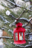 Red lantern hanging on fir branch Royalty Free Stock Images