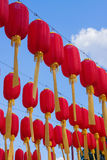 Red lantern is hanging highly Royalty Free Stock Images
