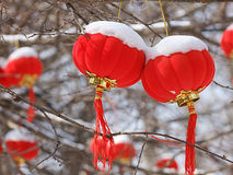 The red lantern. RED Lantern Snow background   inset Stock Photos