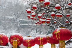Red lantern and snow Royalty Free Stock Photo