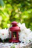 Red lantern Stock Photos