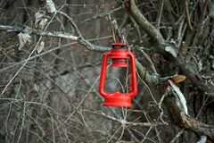 Red lantern in the woods royalty free stock photo