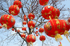 Red lanterns. Tree decorated with red lanterns during the Chinese New Year Royalty Free Stock Photos