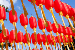 Red lanterns are hanging highly Royalty Free Stock Photography