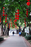 Red lanterns hanging on the tree Royalty Free Stock Photography