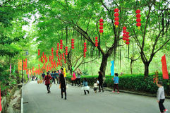 Red lanterns hung on the road Stock Photos