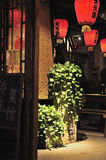 Red lanterns and plants. This is the hotel in front of a device, deserve to go up the lights bright and moving Royalty Free Stock Image