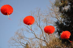 Red lanterns at temple fairs Stock Photos