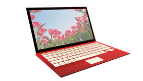 Red laptop isolated on white Royalty Free Stock Image