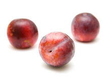 Red large plums Stock Photography