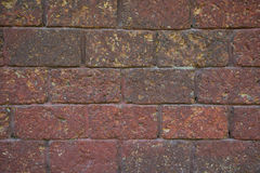 Red laterite brick wall Royalty Free Stock Photo