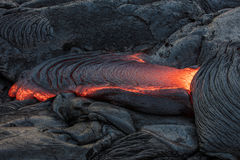 Red lava between black magma. Molten magma red hot lava flowing on cold lavafiled in grey colored texture of volcanic background Stock Photos