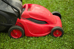 Red lawnmower on green grass Royalty Free Stock Image