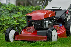 Red Lawnmowerand Ivy Stock Photos