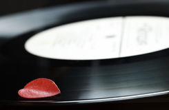 Red leaf on black plate. Composition of red dead leaf on black old retro vinyl music plate, nostalgia concept Stock Photos