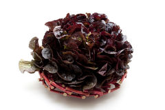 Red leafy vegetables. On wood plate Stock Photography