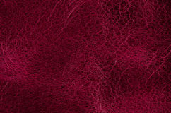 Red leather Royalty Free Stock Photos