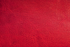 Red leather background. Close up Royalty Free Stock Photos