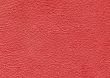 Red leather background Stock Images