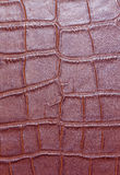 Red leather background. Or texture leather texture Stock Images