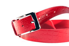 Red Leather Belt Stock Images